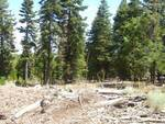 roundup2 California Pines Land For Sale Vacant Building Lot