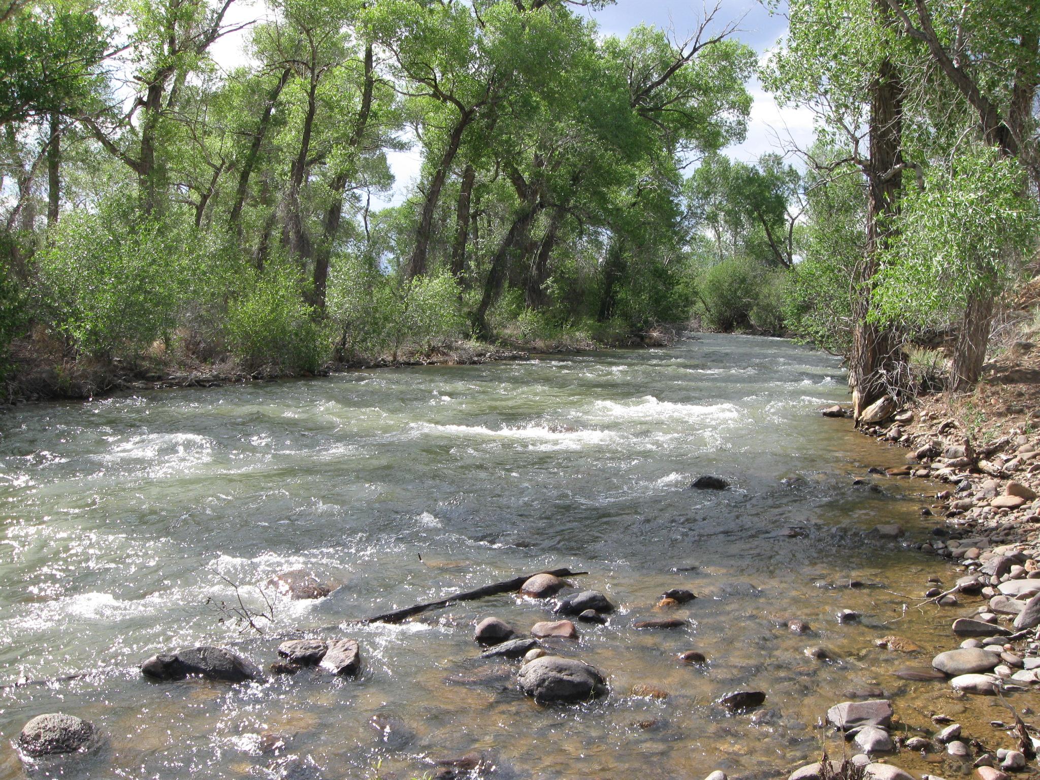 Alamosa River Estates Vacant Lots Trout Fishing